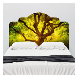 J. Paul Moore - Paul Moore's Tree of Life Cantigney Park, IL Headboard Wall Decal - Contemplate your existence as you drift into dreamland with this adhesive headboard wall decal featuring Paul Moore's photography. The Tree of Life trope is found in many cultures, explaining everything from the existence of the earth to the order of the heavens to reincarnation. Lovely!