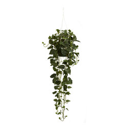 Nearly Natural - Nearly Natural Philodendron Hanging Basket Silk Plant - This amazing philodendron hanging basket speaks for itself. This silk plant features 264 meticulously shaped green leaves with vines hanging 30 inches below the bottom of the basket. From the top hook to the bottom of the vines the plants measures a strong 44 inches. Perfect for home or office this silk hanging basket is a must have.