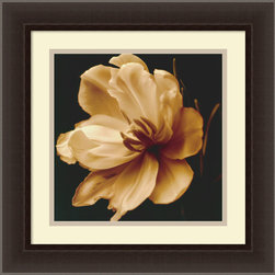 Amanti Art - Timeless Grace III Framed Print by Charles Britt - Pure and perfect, this sepia print magnolia flower is a calming, centering addition to your space. Hang it in the bedroom or bath, light a magnolia-scented candle, and envelop yourself in the calming, timeless beauty of this magical flower in full bloom.