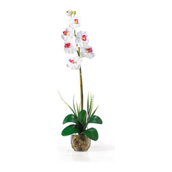 Nearly Natural - Single Phalaenopsis Liquid Illusion Silk Flower Arrangement - Check out this stunning phalaenopsis orchid! Bursting with color and personality the Phalaenopsis is perhaps the most popular variety of all the orchids. Expertly arranged, this piece was designed to enhance any space. It comes in 8 outstanding colors: Beauty, cream, dark pink, green, gold, mauve, orchid, and white. Standing 27' tall, each plant comes with one amazing phalaenopsis stem that has 6 flowers and 2 buds. Finished with river rocks, leaves, artificial water and a classic glass vase this item is not to be missed. Color: White, Height: 27'.