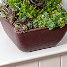 Contemporary Outdoor Pots And Planters by White Flower Farm