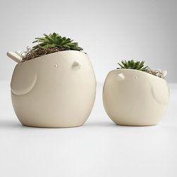 Hen + Chicks Succulents - Easy-to-grow succulents make their home in these charming hen and chick ceramic containers.