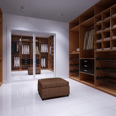 Contemporary Closet by VANGUARD development