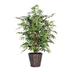 4 ft. Japanese Maple Extra Full Tree - About VickermanThis product is proudly made by Vickerman, a leader in high quality holiday decor. Founded in 1940, the Vickerman Company has established itself as an innovative company dedicated to exceeding the expectations of their customers. With a wide variety of remarkably realistic looking foliage, greenery and beautiful trees, Vickerman is a name you can trust for helping you create beloved holiday memories year after year.