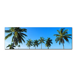 Trademark Fine Art - Preston 'Palms' Gallery-wrapped Canvas Art - This tropical gallery-wrapped canvas art is sure to brighten up any home or office with its bright blue sky and vibrant green palm trees. Simply looking at this 'Palms' photograph print will instantly take you away to a sunny beach in paradise.