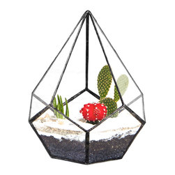 Mandela Teardrop Terrarium Planter, Large - Mandela is a teardrop-shaped terrarium that will light up any room. Inspired by the history of Mandela Parkway and remembering what once stood in its place, the Mandela teardrop represents the new and celebrates the old.