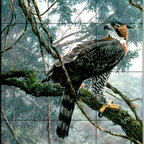The Tile Mural Store (USA) - Tile Mural - Ornate Hawk Eagle - Kitchen Backsplash Ideas - This beautiful artwork by Alan Hunt has been digitally reproduced for tiles and depicts a Hawk Eagle sitting on a brach.  Images of birds of prey on tiles are great to use as a part of your kitchen backsplash tile project or your tub and shower surround bathroom tile project. Pictures of eagles on tile and images of owls on tiles make a great kitchen backsplash idea and are excellent to use in the bathroom too for your shower tile project. Consider a tile mural of hawks and eagles for any room in your home where you want to add interest to a plain tile wall area.
