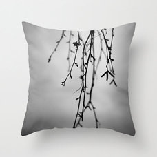 Modern Decorative Pillows by Beth Wold Photography