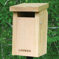 Songbird Essentials - Bluebird House Slot - Slot entrance discourages sparrows. Easy open for monitoring and cleaning. Ventilation and drainage holes.