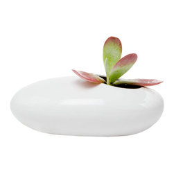 White Pebble Plant Holder - Vibrant green succulents look fantastic in this White Pebble Plant Holder. The bold green color against the vibrant white create a vivid color contrast. Do yourself a favor and pick up a few to add a clean and natural aesthetic to any room's decor.