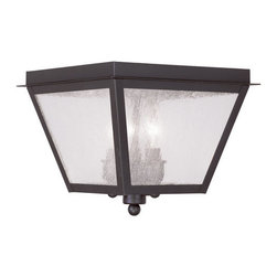 Livex Lighting - Livex Lighting 2549 Amwell Outdoor Flush Mount Ceiling Fixture - Livex Lighting 2549 Amwell Three Light Outdoor Ceiling FixtureShowcasing a traditional design, the Amwell three light open bottom outdoor ceiling fixture has four large seeded glass panes and a simple decorative ball and disc finial that will complement any outdoor decor.Livex Lighting 2549 Features: