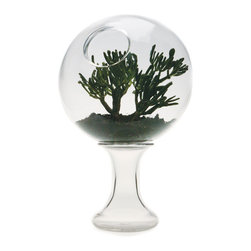 Esque - 2001: A Space Terrarium, Large - This graceful glass orb nestles atop the base at any angle, allowing you to adjust the opening to suit your purpose. Terrarium? Fishbowl? Or just an exquisite vessel filled with colored fluid? Whatever the choice, it's sure to become a focal point in your home.