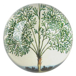 John Derian Crystal Paperweight Dome- Fern Spray - John Derian has the most mind-blowing collection of vintage ephemera, and he uses the lost art of decoupage to share it with the world. Pass one along and share it with a friend in the form of this paperweight - there are endless choices, but we're sharing the charming fern spray version with you.