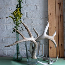 Single Naturally Shed Deer Antler - Naturally shed deer antlers can be used in so many decorative ways. Putting them in a vase instead of flowers is an unusual idea. I love that these do not come from hunted deer.