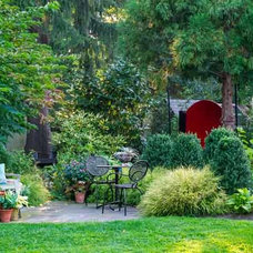 Extra Attention for Unusual Plants | A Charming Garden With Planter's Punch | Th