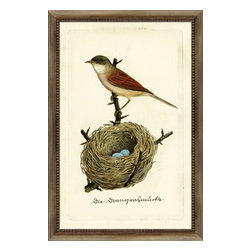 Wendover Art - Bird and Nest - This striking Giclee on Paper print adds subtle style to any space. A beautifully framed piece of art has a huge impact on a room for relatively low cost! Many designers and home owners select art first and plan decor around it or you can add artwork to your space as a finishing touch. This spectacular print really draws your eye and can create a focal point over a piece of furniture or above a mantel. Each unique art piece is printed & manufactured in the USA. Please allow 4 weeks for delivery as each piece is printed to order & requires careful handling.