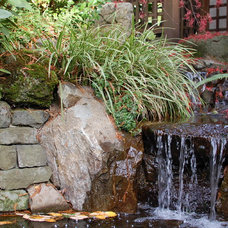 Traditional Landscape by Ross NW Watergardens