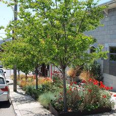 by Arterra Landscape Architects