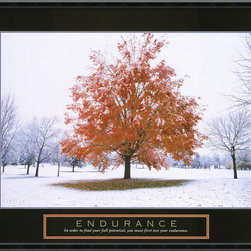 "Amanti Art - ""Endurance – Fall Tree"" Framed Print - A lone tree stands defiantly holding onto the last strands of fall while all of the others around it have succumbed to winter already. If you have weathered any type of storm, you have tested your endurance and therefore have understood the magnitude of your full potential. Let this custom framed stunning print be your beacon, your much needed reminder that when times get tough, you need to be tougher."