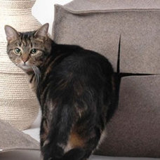 Modern Litter Boxes And Covers by Better Living Through Design