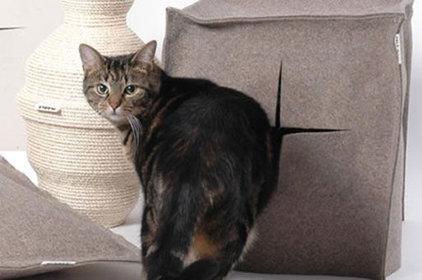 Modern Pet Supplies by Better Living Through Design