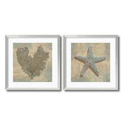 Amanti Art - Caroline Kelly 'Aqua Fan Coral & Starfish- set of 2' Framed Art Print 27 x 27-in - The seashell photography of Caroline Kelly depicts an adoration for the patterns and designs crafted by mother nature herself; share your appreciation for these seaside treasures by adding this framed artwork set to your decor.