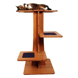 """Square Cat Habitat - 36"""" Acacia Cat Tree - The Acacia accommodates cats of all ages, sizes, and abilities. The 2 branches provided are great for climbing and playing, while the treetop is a perfect place to rest, observe, or scratch. At 36'' high, the Acacia fits nicely in front of most windows and gives your cat a new home with a view. Catnip can be placed behind or rubbed onto the inserts to further entice scratching and playing. Features: -Cat tree.-Available with mohair beta fish, mohair black cat, mohair chinchilla, mohair hamster, plush lime or plush pewter insert.-Plush pewter insert top has soft pewter insert step.-Accommodates cats of all ages, sizes and abilities.-Two branches and treetop.-Laminated with 100% recycled wood fiber core.-Velcro backed removable inserts allow you to vacuum, clean, or replace.-No corrugated cardboard mess to clean-up.-Inserts are recessed into base material so the edges are not exposed.-Looped pile carpets are not used, due to snagging on cat claws.-Black Phillips low profile screws.-Non-skid rubber feet.-Made in USA.-Distressed: No.-Country of Manufacture: United States.Dimensions: -Available in black, white or bamboo amber vertical (0.25'' wide grain) laminate base material.-Overall dimensions: 36'' H x 18'' W x 18'' D.-Overall Height - Top to Bottom: 36.-Overall Width - Side to Side: 36.-Overall Depth - Front to Back: 18.-Overall Product Weight: 28 lbs.Assembly: -Features:.-Assembly required.Warranty: -Manufacturer provides 90 days warranty from the date of purchase."""