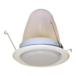"Nora Lighting - Nora NTS-6244 6"" Regressed Drop Opal Lens with Baffle and Specular Clear Reflect - 6"" Regressed Fresnel Lens with Baffle and Specular Clear Reflector"