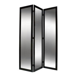Screen Gems - Mirrior Privacy Screen Divider with Black Frame - This 3 panel beautiful wooden frame mirror screen will add depth in your space and life. Wooden frame. Black finish. 50 in. W x 69 in. H (50 lbs.)Have you ever felt destined for greatness? Have you imagined your life full of adventure and possibility? You may find all the answers at the beautiful Mirror Screens