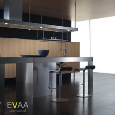 Modern Kitchen Cabinets by EVAA International, Inc.