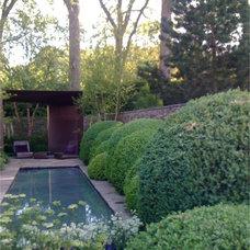 Modern Pool Cloud Pruned Buxus The Laurent-Perrier Garden Chelsea Flower Show 2010