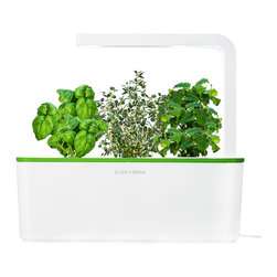 Click and Grow - Click & Grow Smart Herb Garden Starter Kit, Green Lid - The Smart Herb Garden starter kit with a green lid grows fresh culinary herbs and greens for you automatically - no gardening experience or backyard required! The kit includes an LED grow light, 3 smart soil plant cartridges, and the basin that automatically regulates water levels to start growing delicious basil, lemon balm, and thyme herbs in just a few weeks. Fill the water basin, plug it in, and in 2-4 weeks you will see the plant sprouts, followed by full growth in 2-4 months. Want more variety? Smart Herb Garden refills come in many varieties, including chili pepper, mini-tomato, salad rocket, lemon balm, basil, and thyme.