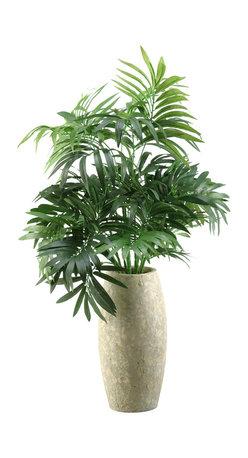 D&W Silks - D&W Silks Parlor Palm In Ceramic Vase - Parlor Palm Plant