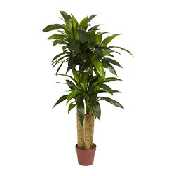 Nearly Natural - Silk 4-foot Potted Corn Stalk Dracaena Plant - You do not need a green thumb to enjoy this beautiful silk Dracaena plant. This true-to-life,four-foot corn stalk dracaena plant has such a verdant look,you will find yourself touching it to make sure it is really crafted from polyester and plastic.