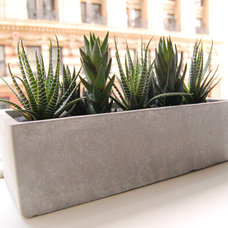 Modern Indoor Pots And Planters by LushModern