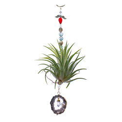 Spirit Pieces - Tillandsia Air Plant with Agate Suncatcher and Quartz Dongle - This is a great addition to any indoor garden or window planter, especially those sitting in a bay window.  Super light so can be hung off of window threshold or existing plant/potting.  Anyone getting this gift will give you a big hug!  Needs watering twice a week and/or daily misting with placement in indirect light.