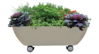 contemporary outdoor planters by Amazon