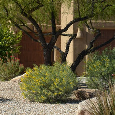 by Noelle Johnson Landscape Consulting
