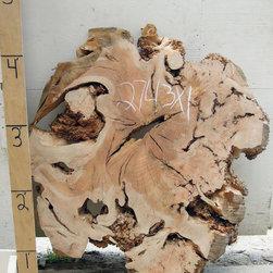 Big Leaf Maple Burl Tabletop 2743x1 - BIG LEAF MAPLE (acer macrophyllum)