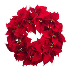 Silk Plants Direct - Silk Plants Direct Poinsettia Wreath (Pack of 2) - Pack of 2. Silk Plants Direct specializes in manufacturing, design and supply of the most life-like, premium quality artificial plants, trees, flowers, arrangements, topiaries and containers for home, office and commercial use. Our Poinsettia Wreath includes the following: