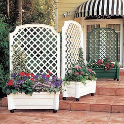 Self-Watering Green/White Planter/Trellis - I think I have just found the solution to several of my deck issues. I happen to have lost every tree in my back yard so have tons of sun and very little privacy. These planters have watering reservoirs that help in a sun-drenched environment and built in trellises that provide some interest and height to a bare deck or patio.