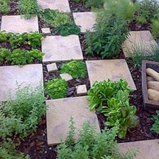 Layout for herb garden ~ Thyme Square?! | 5 Home + Garden