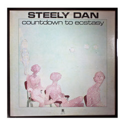 """Glittered Steely Dan Waiting for Ecstasy - Glittered record album. Album is framed in a black 12x12"""" square frame with front and back cover and clips holding the record in place on the back. Album covers are original vintage covers."""