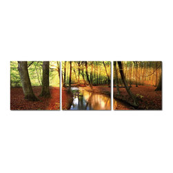"Baxton Studio - Baxton Studio Forest Oasis Mounted Photography Print Triptych - With the sun streaming through the leaves and a stillness in the air the forest seems enchanted, if only for a moment. Captured perfectly with vivid inks on waterproof vinyl canvas sheets, this nature scene photograph is mounted in three parts on separate MDF wood frames and intended to be displayed together as a triptych. Printed and manufactured in China, this contemporary photo set does not include mounting hardware. To clean, we recommend dry dusting.Dimensions (each): 20"" H x 20"" W x 1"" D"