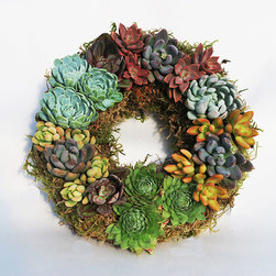 Colorful Succulents Wreath - A Dot & Bo exclusive, this hand-assembled succulent wreath can't be found anywhere else. Adorned with luscious, subtly textured, water-saving succulents in chalky smooth purples, grays, and greens with natural burgundy edges over carefully gathered lichen, this floral decor makes an excellent gift or a unique centerpiece for your table. Naturally slow growers, these lively succulents only need to be watered every 3-10 weeks and can be pinched or pruned in order to maintain the shape you've grown to love.