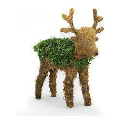 """Frontgate - Ivy Greened Reindeer - Large - Crafted with a sturdy wire frame. Hand-stuffed and wrapped to give it shape. Planted with dark green ivy; vines are pinned to the body. Arrives ready to display. Choose from Large and Small. Bring a whimsical festive touch to your home with our Ivy Mossed Reindeer. Santa's reindeer arrives adorned with a """"coat"""" of live English ivy and a big red bow, ready to add irresistible charm to holiday decor. Skillfully made with a sturdy wire frame, then planted with well-rooted dark green ivy, this plant merits being prominently displayed in your home this season. Ivy topiaries require minimal care, but prefer a bright location out of direct afternoon sun.  .  .  .  .  . Makes a lovely holiday gift . Made in the USA. Note: This product cannot ship to Oregon."""