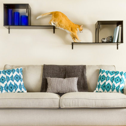 Contemporary Cat Furniture by Petsmart