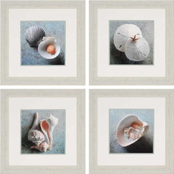 Paragon Decor - Sea Collection Set of 4 Artwork - Soft shades of blue contrast against seashells and sand dollars.