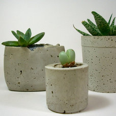 Modern Indoor Pots And Planters by Dachshund in the Desert
