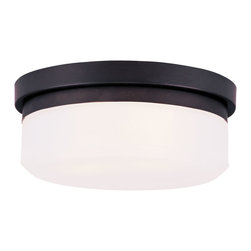 Livex Lighting - Livex Lighting 7391-07 Ceiling Mount or Wall Mount - Glass Type/Shade Type: Hand Blown Satin White Glass